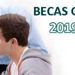 BECAS Y AYUDAS PARA ESTUDIAR FORMACIÓN PROFESIONAL 2019/2020